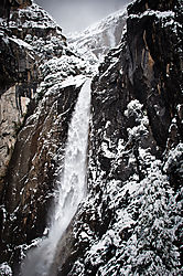1102_Yosemite_Day3_081-Edit.jpg