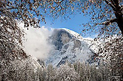 1102_Yosemite_Day3_199-Edit.jpg