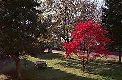 Agfa_CTpre_29_10_2014_FN_Herbst_Redhancer_web.jpg