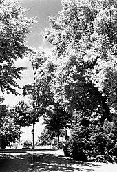 SFX200_30a_210612_FN_Promenadenpark_web.jpg