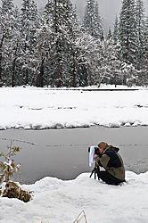 1102_Yosemite_Day2_016.jpg