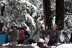 1102_Yosemite_Day3_123.jpg