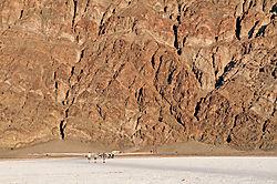 7552-Badwater-Cliffs.jpg
