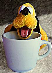 Drinking_Pluto_copy.jpg