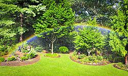Garden_Rainbow11.jpg