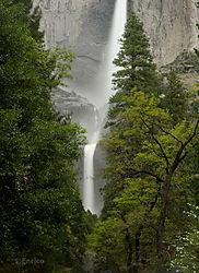 Enrico_Yosemite-321.jpg
