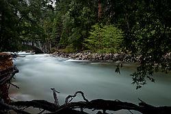Enrico_Yosemite-501.jpg