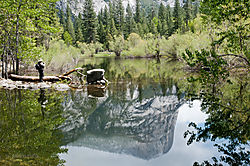 Enrico_Yosemite-631.jpg