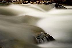 Merced_River11-5-281.jpg