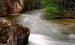 Merced_River11-5-291.jpg