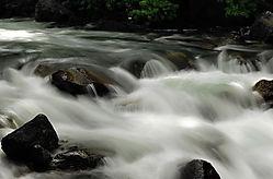 Merced_River_11-5-291.jpg