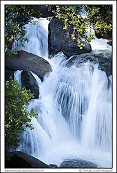 Yosemite_Day_1-3.jpg