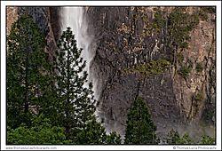 Yosemite_Day_1-5.jpg