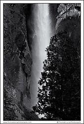 Yosemite_Day_1-7.jpg