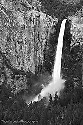 Yosemite_Day_2-12.jpg