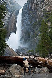 Yosemite_Day_2-6.jpg