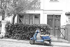 paris_2011_08.jpg