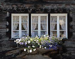 Zermatt_Window_2.jpg