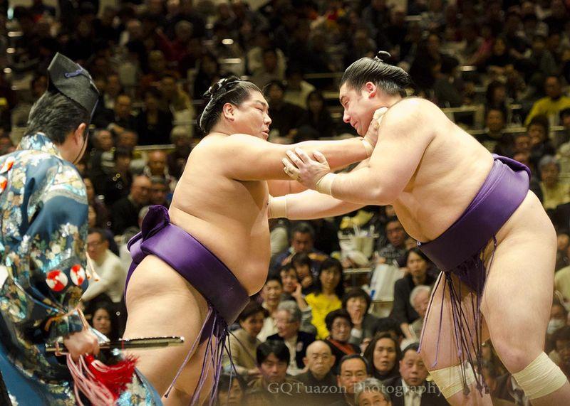 Twink sumo wrestler photos, tamil hiroen xxx