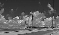 Z_Savannah-27.jpg