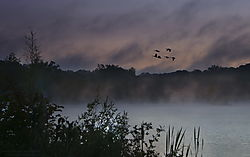sunrising_over_Eagle_creek_rv-2004_rs.jpg