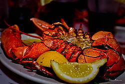 DSC_0261_lobster_sm.jpg