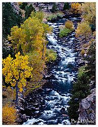 Clear_Creek09.jpg