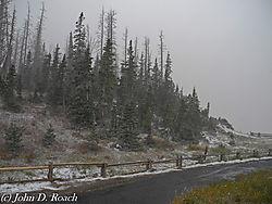 Cedar_Break_in_the_Snow_Storm-0555.JPG