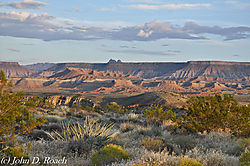 South_Zion_Canyon-9010.JPG