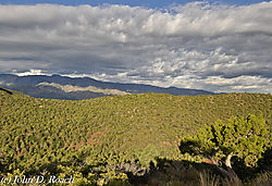 View_from_West_Ridge_of_Kolob_Canyon_Zion_NP-9209.JPG