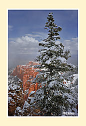 Bryce-in-Snow21.jpg