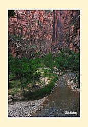 Zion-Canyon3.jpg