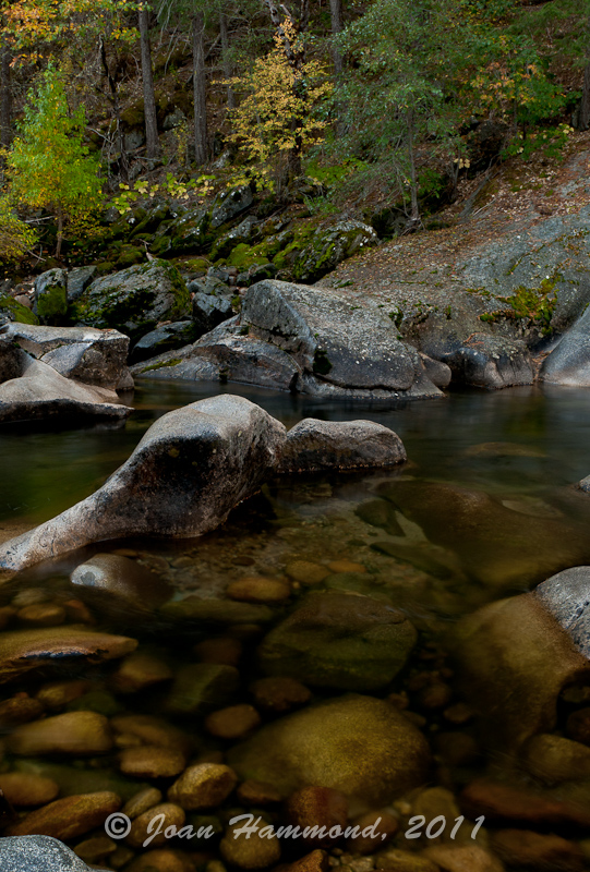 Merced_River-4459