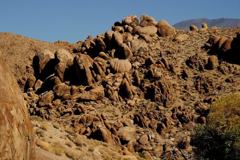 The_Rock_Garden1