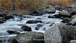 Bishop_Creek-.jpg
