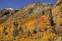 Eastern_Sierra1.jpg