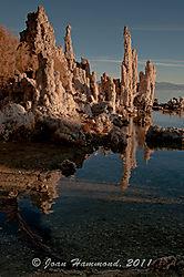 Mono_Lake_Sunrise-4146.jpg