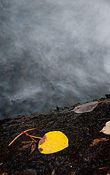 Water_High_Sierras-3.jpg
