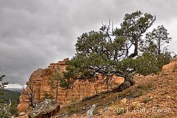 Utah20111005_055-HDR.JPG