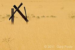 Zion20111003_465.JPG