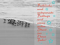 DSCN4695_xmascard.jpg