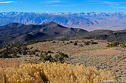Sierra_View.jpg