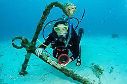 Bonaire-59.jpg
