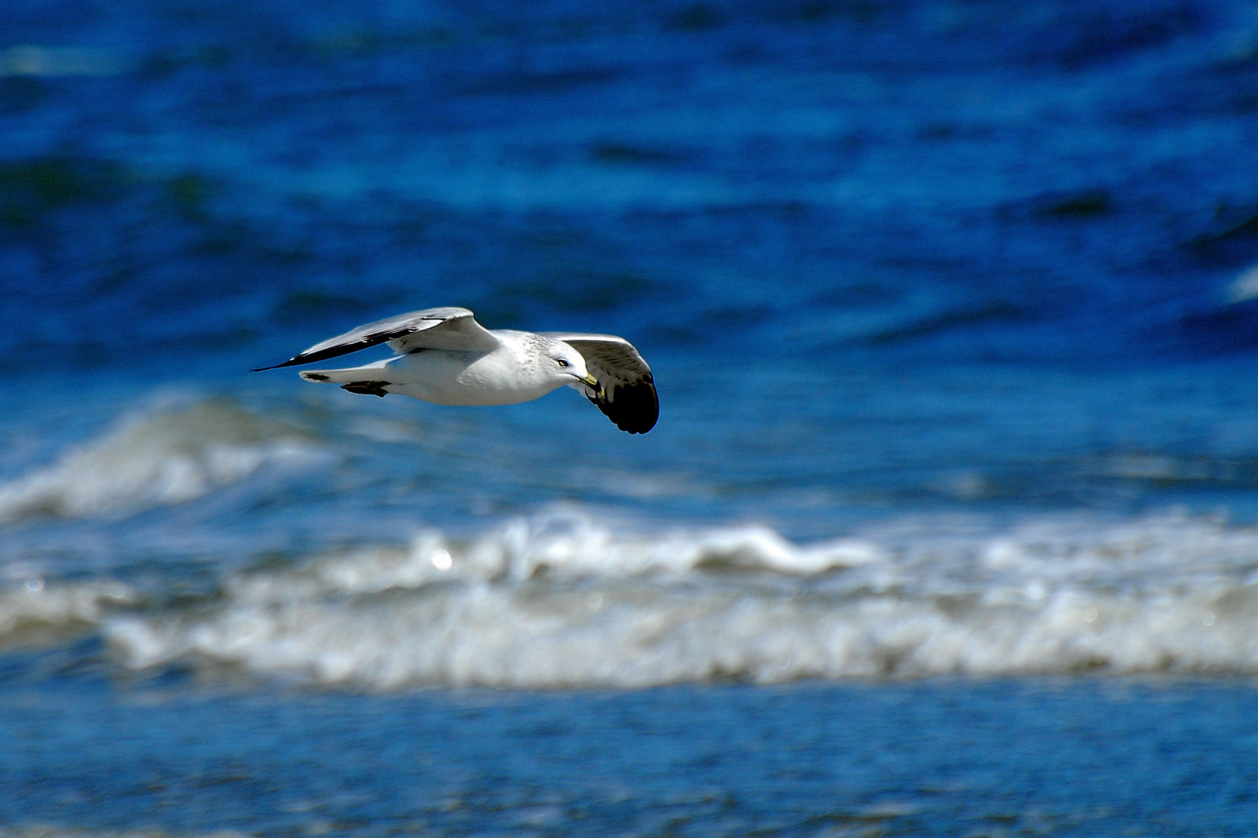 120120_The_Beach_4