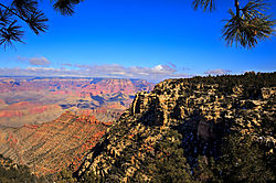 Grand_Canyon_-_Pines_in_Foreground_Nikonians.jpg
