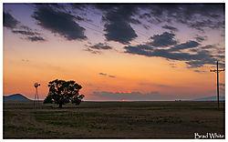Tree_Mill_SunsetII.jpg