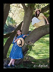 Up-a-Tree-_CAM93661.jpg