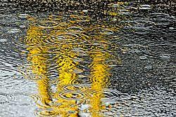 RaindropsGravelPuddle-NK-C7P3905.jpg