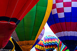 Balloons_-_Multi_Colored_-_Nikonians.jpg