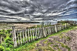 fence1b-medium.jpg